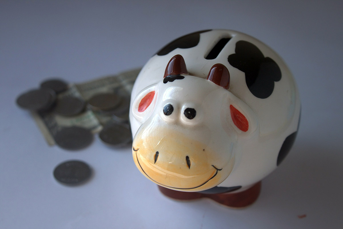 Budgeting and Money Management for Teens and Young Adults